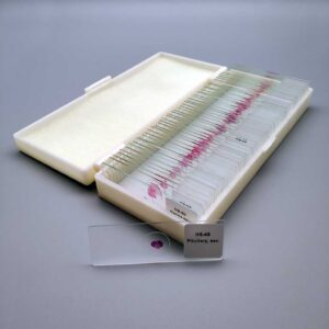 human-histology-slides-set-of-50