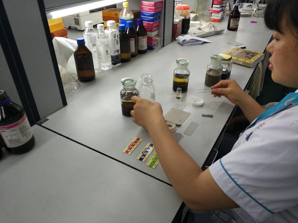 four specimens on one prepared slide 1