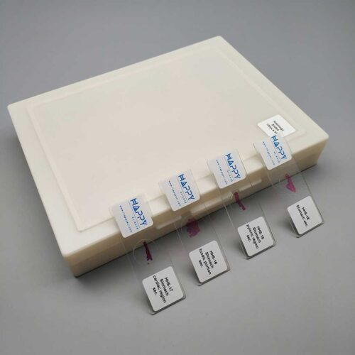 120pcs-histology-slides-prepared